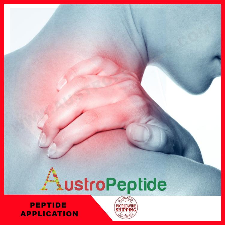 Muscle repair peptides