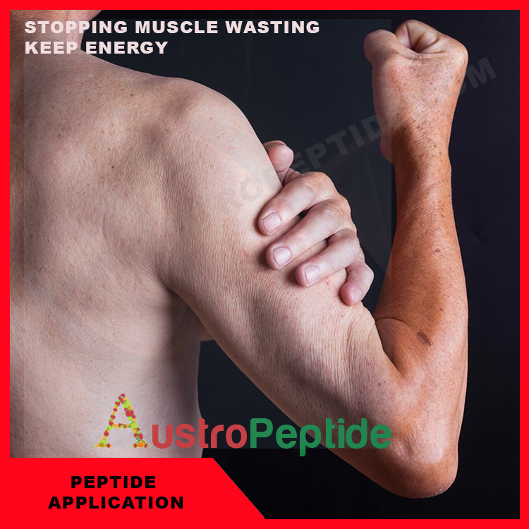 STOPPING MUSCLE WASTING & KEEP ENERGY